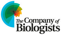 The Company of Biologists Ltd.